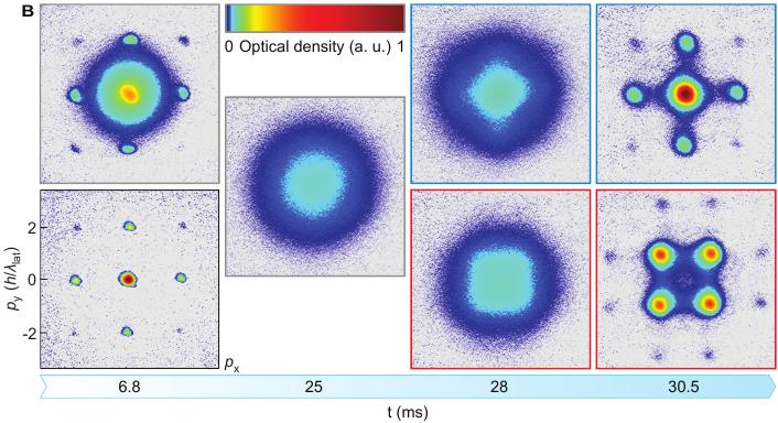 Evolution of potassium in an optical lattice