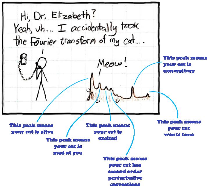 interpreting Fourier transform of a cat